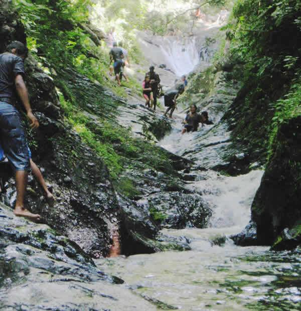 Fiji Natural Artesian Water 16 9 Fl Oz Pack Of 24 Bottles: Aroha Taveuni Resort